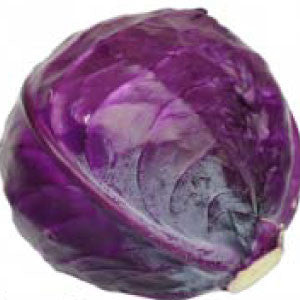 CABBAGE, Red Acre - 99¢ Cent Heirloom Seeds: Heirloom,Bulk