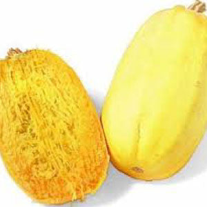 SQUASH, Spaghetti - 99¢ Cent Heirloom Seeds: Heirloom,Bulk