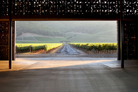herzog-de-meuron-dominus-winery-the-swanky-abode-02
