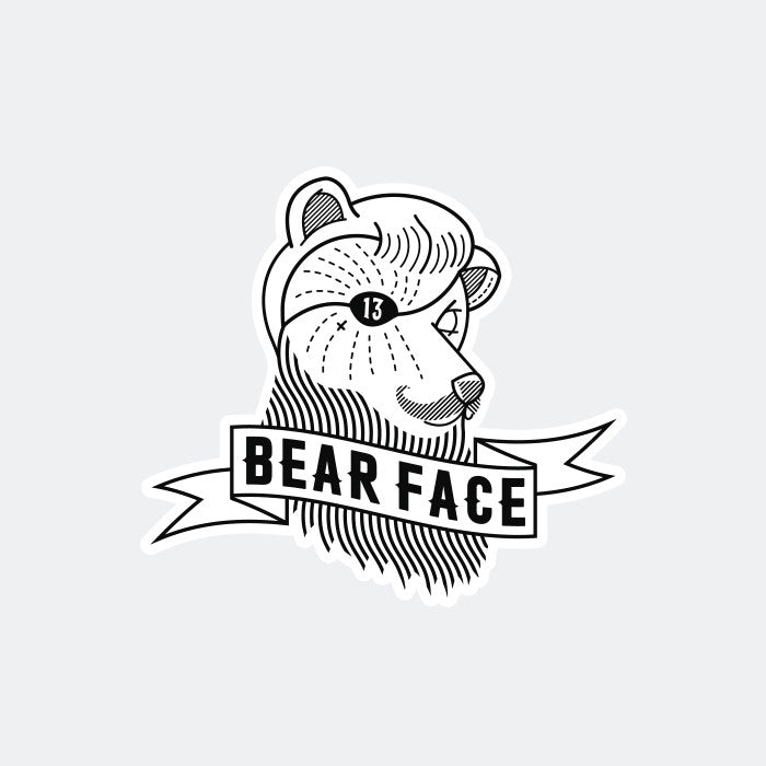 Bear Face Assorted Sticker Set