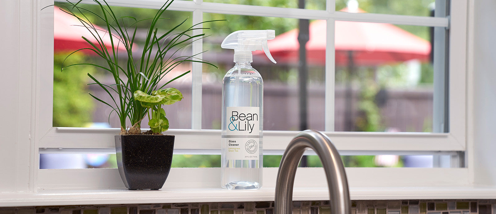 Bean & Lily Window and Glass Cleaner