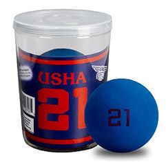 USHA Red 21 Handball - One Ball Can - WPH Live's The Handball Store - 1