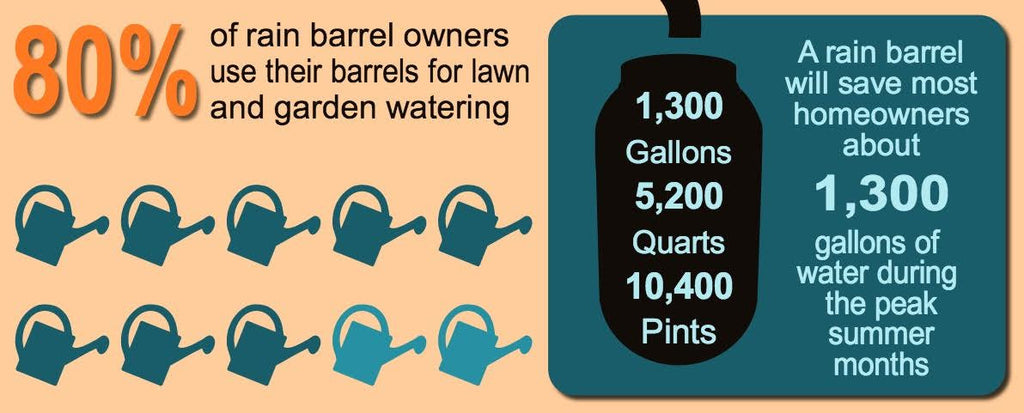 EVERYTHING you need to know about Rain Barrels