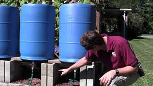 Every person in Colorado should read this about Rain Barrels