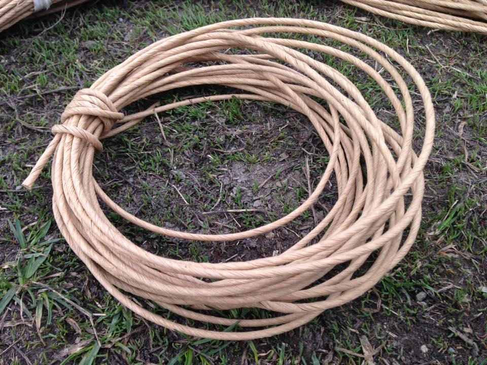 Hops rhizomes, paper twine, paper mulch available