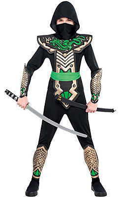 Costume Dragon Slayer Ninja