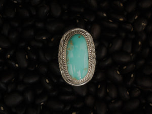 Touch of Turquoise Ring