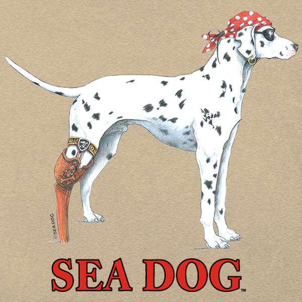 Welcome to the Sea Dog Shop Blog