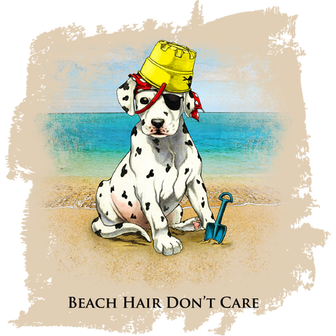 Beach Hair Don't Care- Sea Pup T-Shirt – Sea Dog Shop