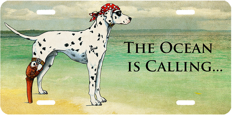 """The Ocean Is Calling ... "" Front License Plates"