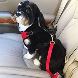 Dog Safety Seat Belt Glow In The Bark