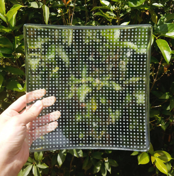 Fused Glass Square Plate - Clear Bubble Grid