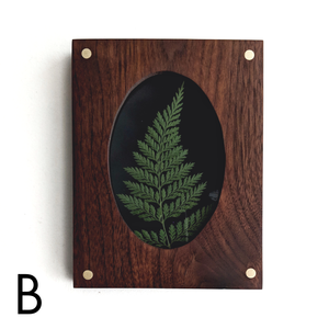 Pressed Fern in Wood Frame