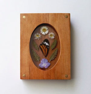 Pressed Flora & Wing in Wood Frame