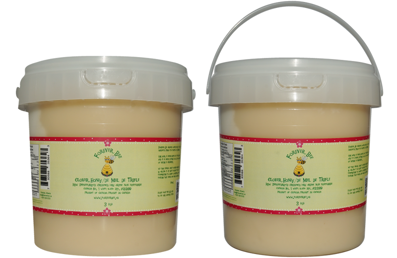 Raw, Creamed Clover Honey - 3kg Pail (Case of 6)