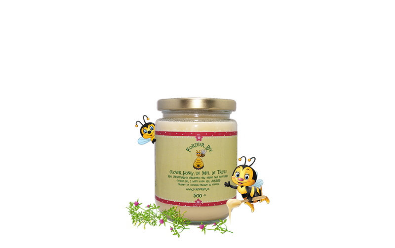 Raw, Creamed Clover Honey - 500g