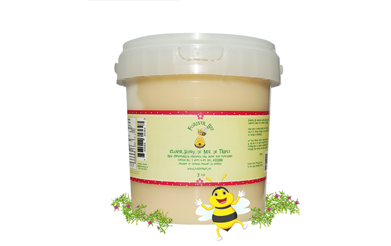 Raw, Creamed Clover Honey - 3kg Pail