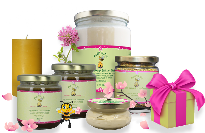 Hive Favourites Bundle - $100