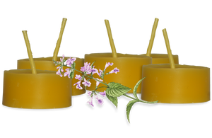 Tealight Beeswax Candles (Pack of 16)