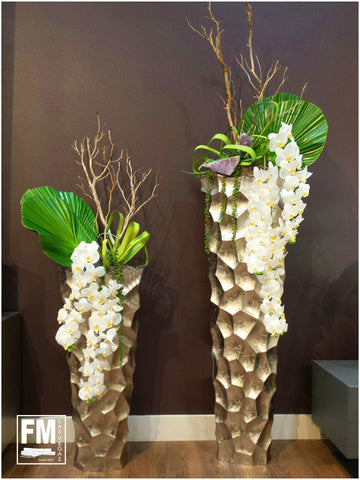 Sculptured Orchids