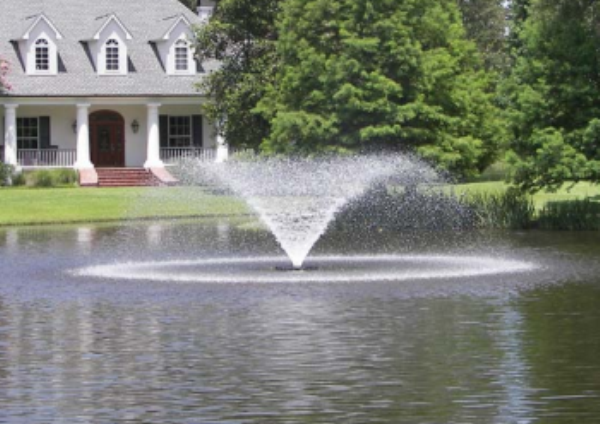 Backyard Floating Fountain