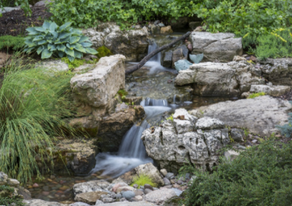 Pondless Moss Rock River