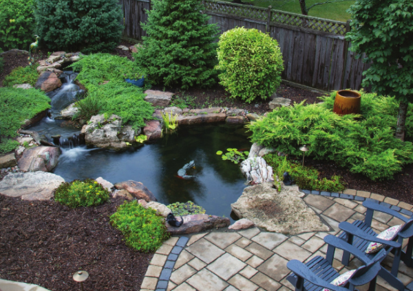 Back Yard Patio Pond