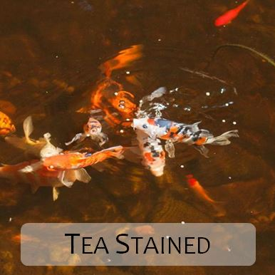 Tea-Coloured Pond Water