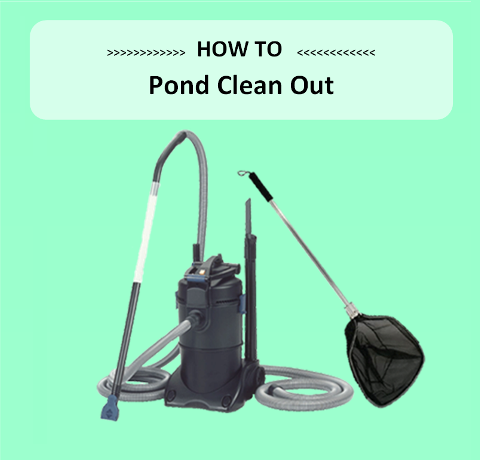 Pond Clean Out - Marquis Gardens