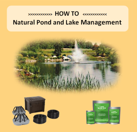 Natural Pond and Lake Management - Marquis Gardens