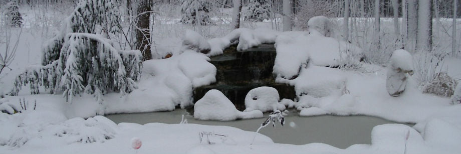 How to Winterize Your Pond, Winter Pond