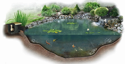 How To Build A Koi Pond Ultimate Step By Step Guide Marquis Gardens