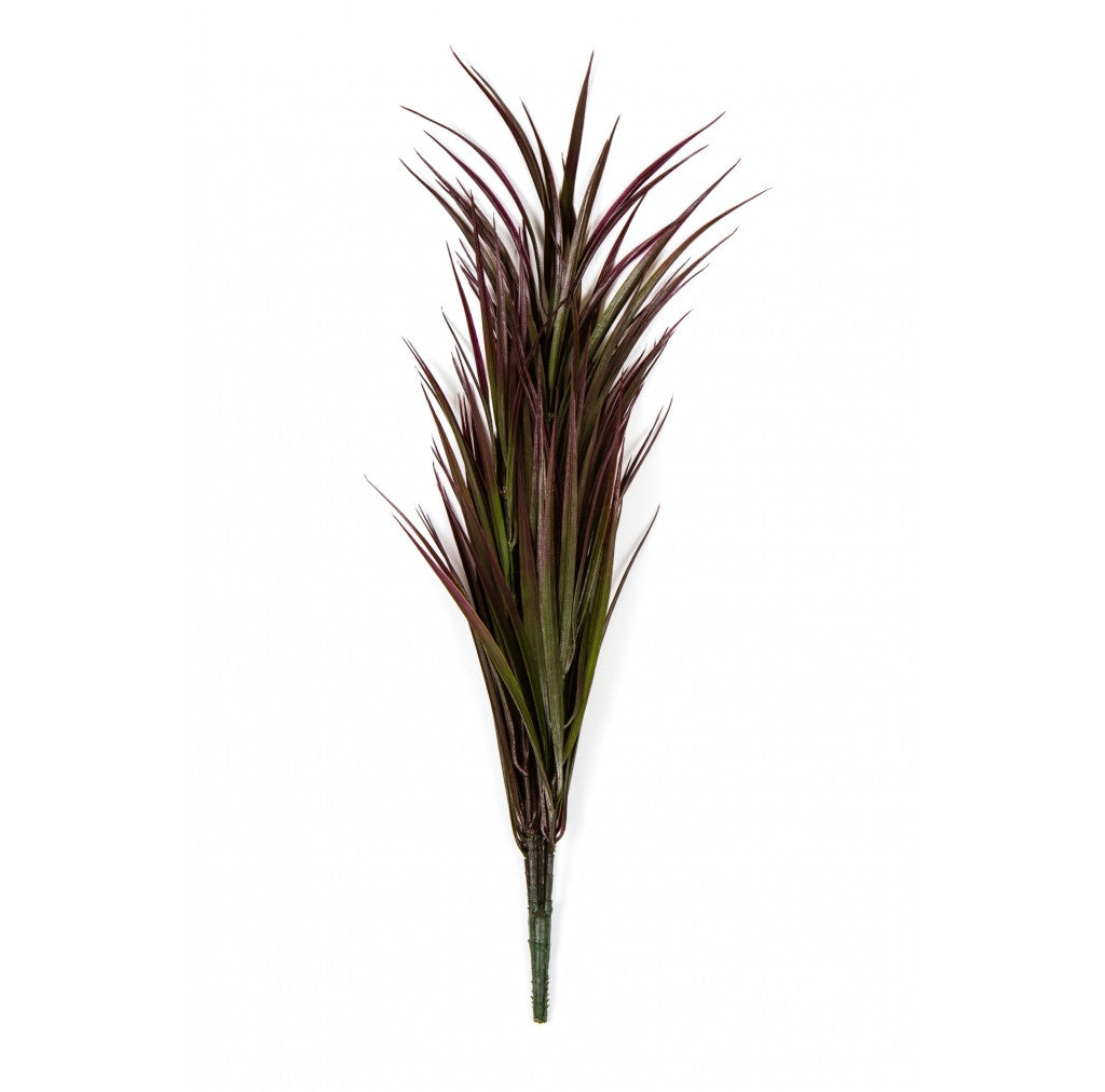 "Photo of Purple Grass, 24""  - Marquis Gardens"