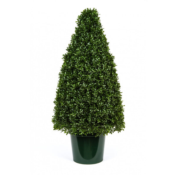 Tea Leaf Cone Topiary, 36