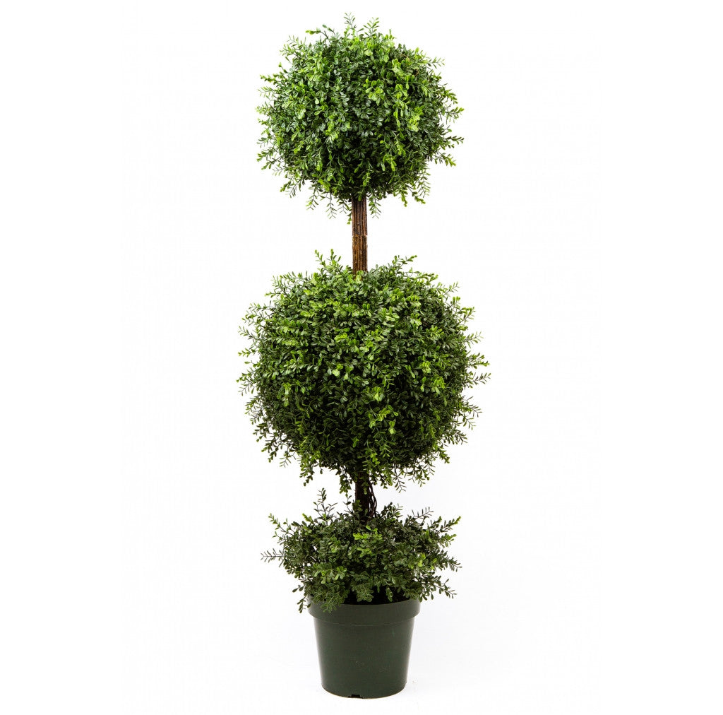 "Photo of Tea Leaf Topiary With Two Ball, 58""  - Marquis Gardens"