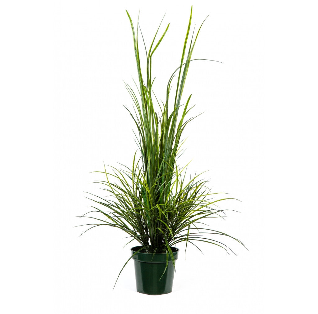"Photo of River Grass, 58""  - Marquis Gardens"