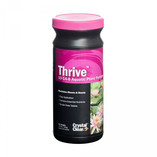 Photo of CrystalClear  Thrive  - Marquis Gardens