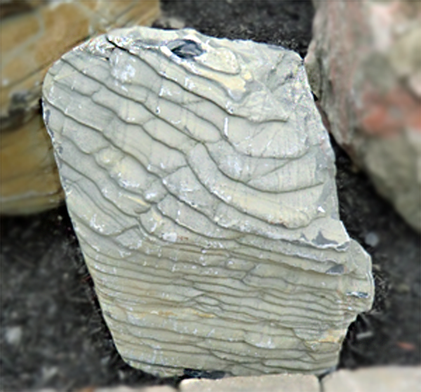 Photo of Bubble Rock 32 Metamorphic (Small)  - Marquis Gardens