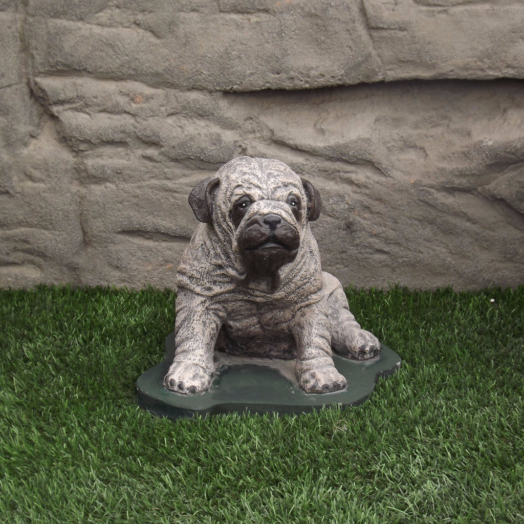 Photo of Pug Dog  - Marquis Gardens