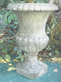 Photo of Greek Urn  - Marquis Gardens