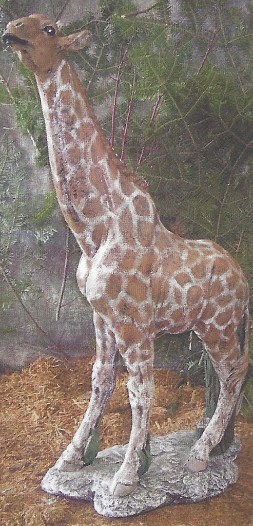Photo of Giraffe  - Marquis Gardens