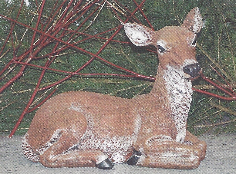 Photo of Laying Doe  - Marquis Gardens