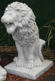 Photo of Lion  - Marquis Gardens