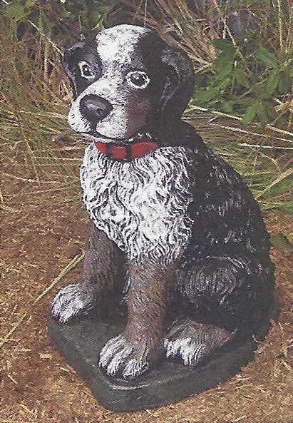Photo of Puppy with Collar  - Marquis Gardens