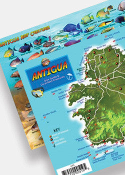 Antigua Dive Guide & Fish ID by Franko