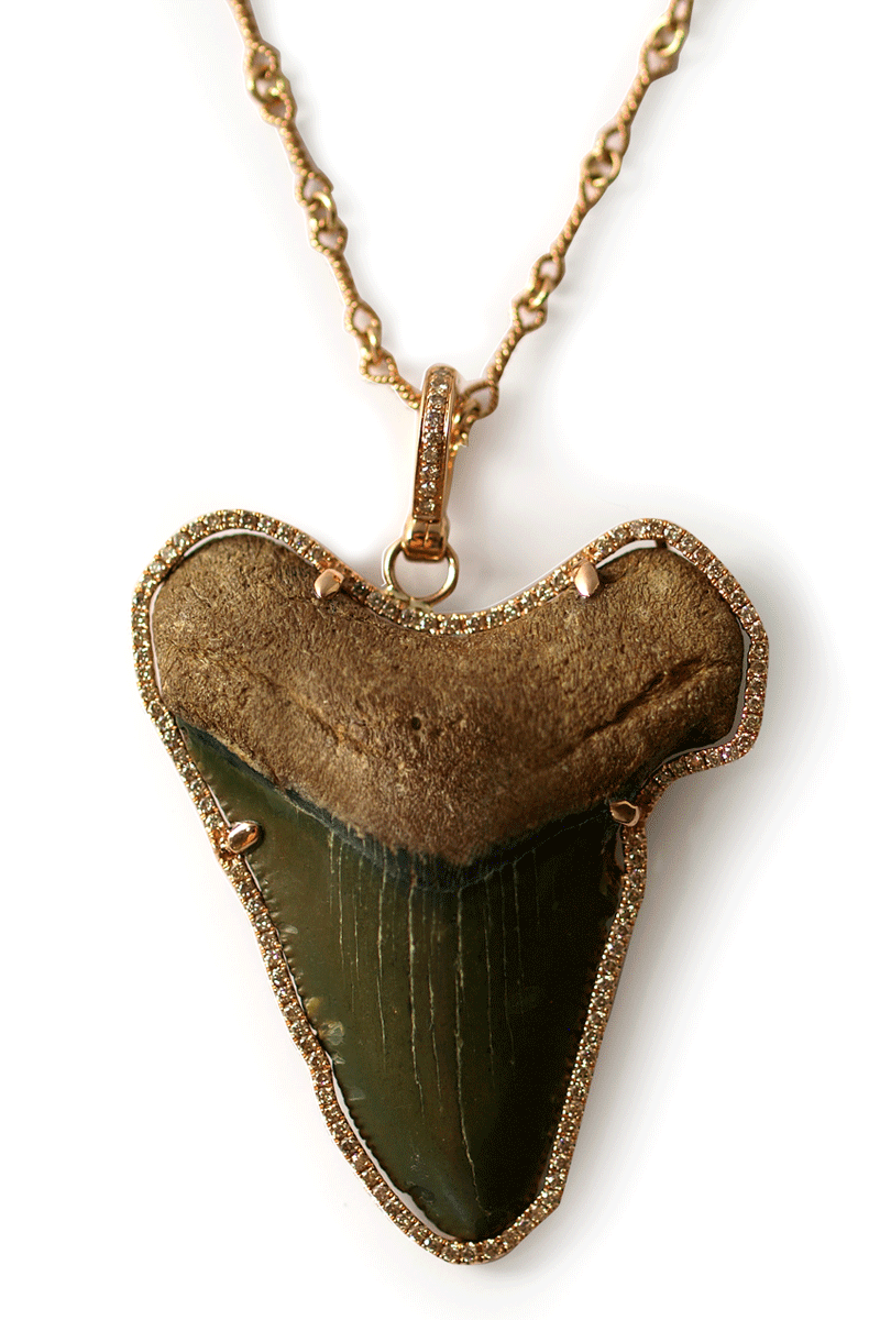 Shark Tooth Necklace With Surrounding Diamonds