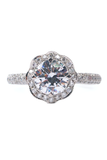 Katharine James Bella Blanca Pave Diamond Semi Mount Ring