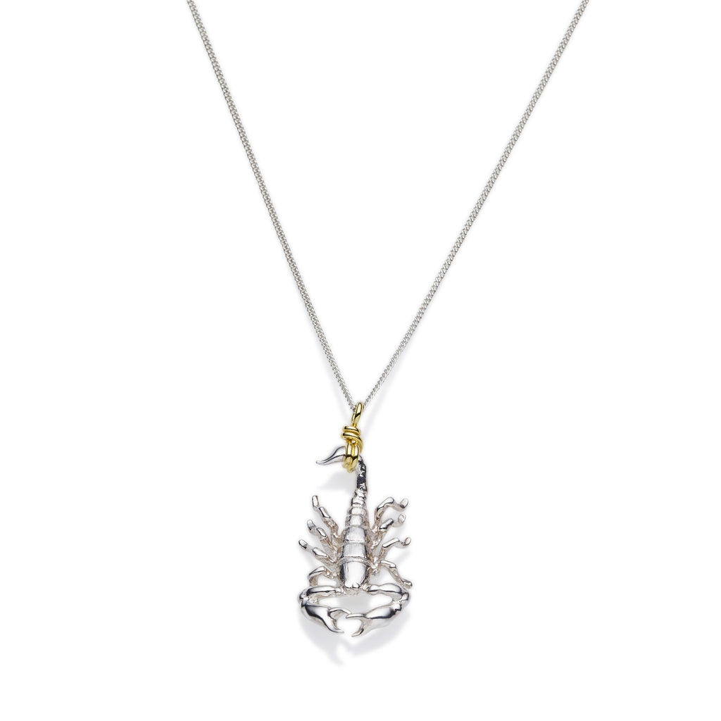Scorpio Necklace | Sterling Silver with Gold Plate
