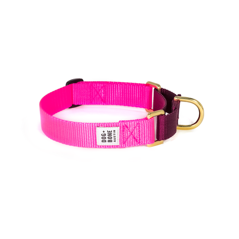 Dog + Bone Martingale Collar Hot Pink & Purple