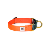 Dog + Collar Martingale Collar Orange & Forest